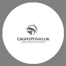Grupo Peñaflor